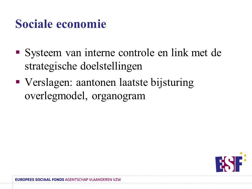 Sociale economie Systeem van interne controle en link met de strategische doelstellingen.