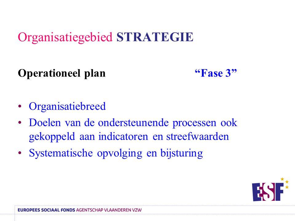 Organisatiegebied STRATEGIE
