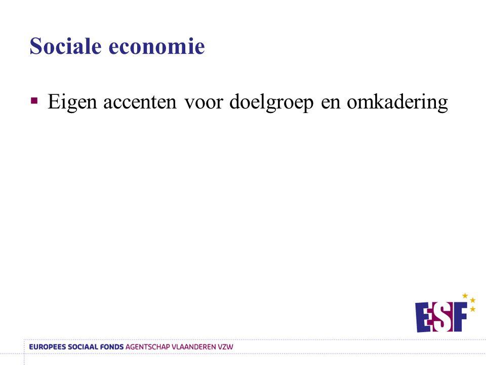Sociale economie Eigen accenten voor doelgroep en omkadering