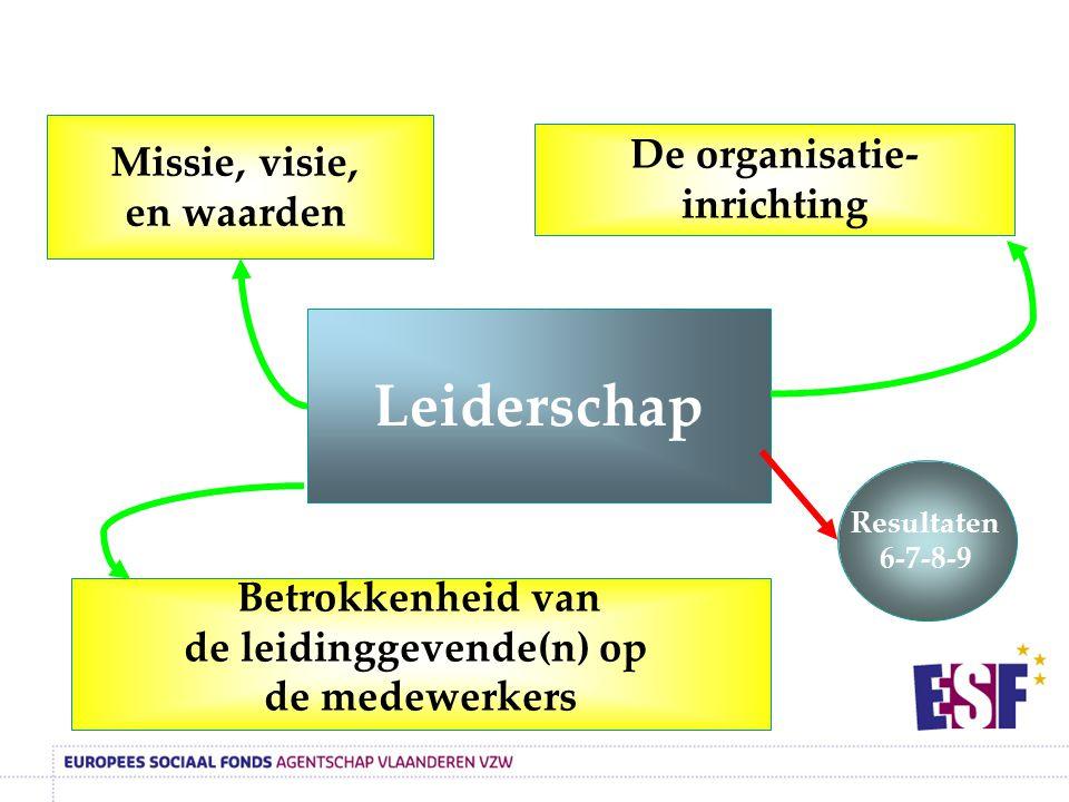 Leiderschap Missie, visie, De organisatie-inrichting en waarden