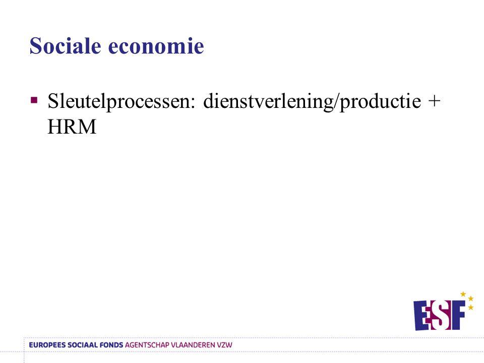 Sociale economie Sleutelprocessen: dienstverlening/productie + HRM