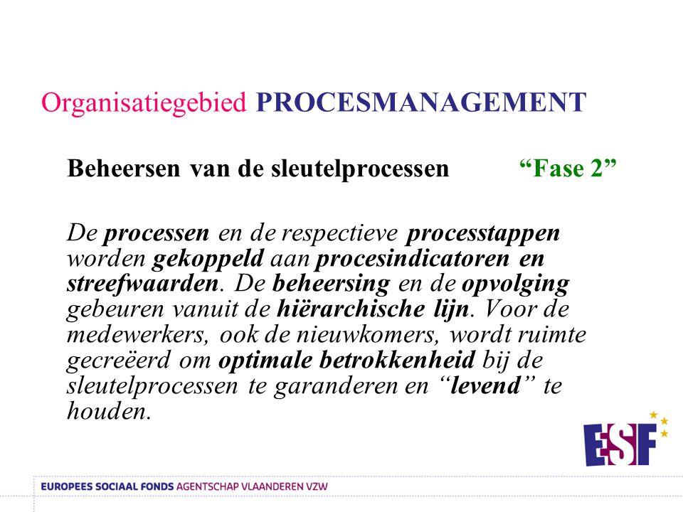 Organisatiegebied PROCESMANAGEMENT