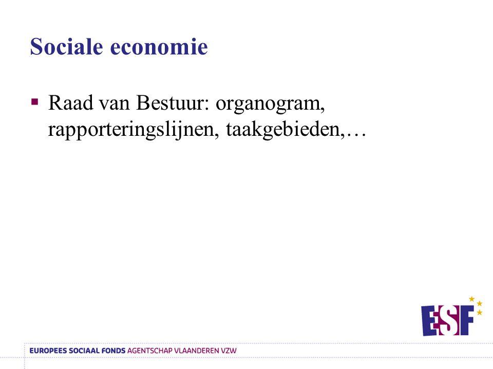 Sociale economie Raad van Bestuur: organogram, rapporteringslijnen, taakgebieden,…