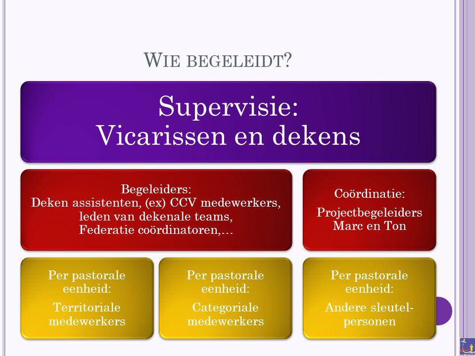 Wie begeleidt Supervisie: Vicarissen en dekens