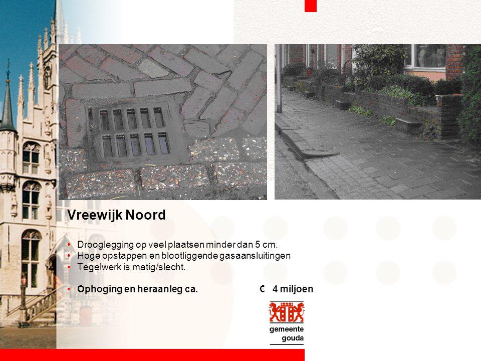 Vreewijk Noord Drooglegging op veel plaatsen minder dan 5 cm.