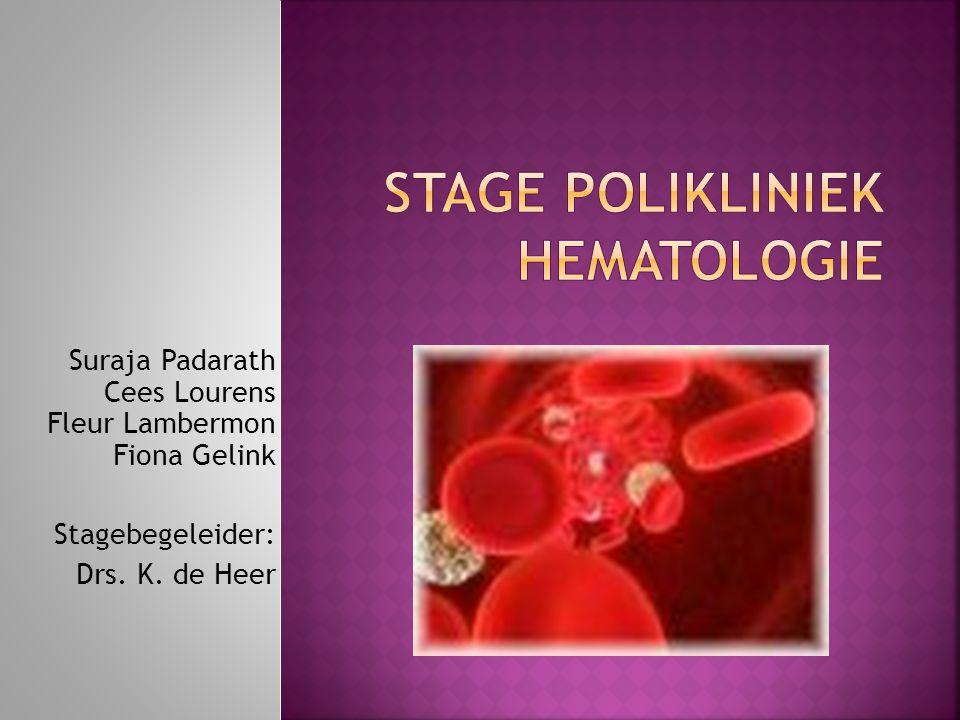 Stage Polikliniek Hematologie