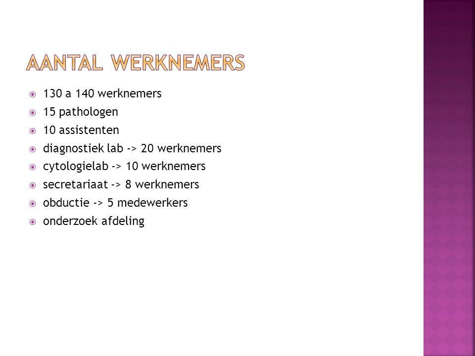 Aantal werknemers 130 a 140 werknemers 15 pathologen 10 assistenten