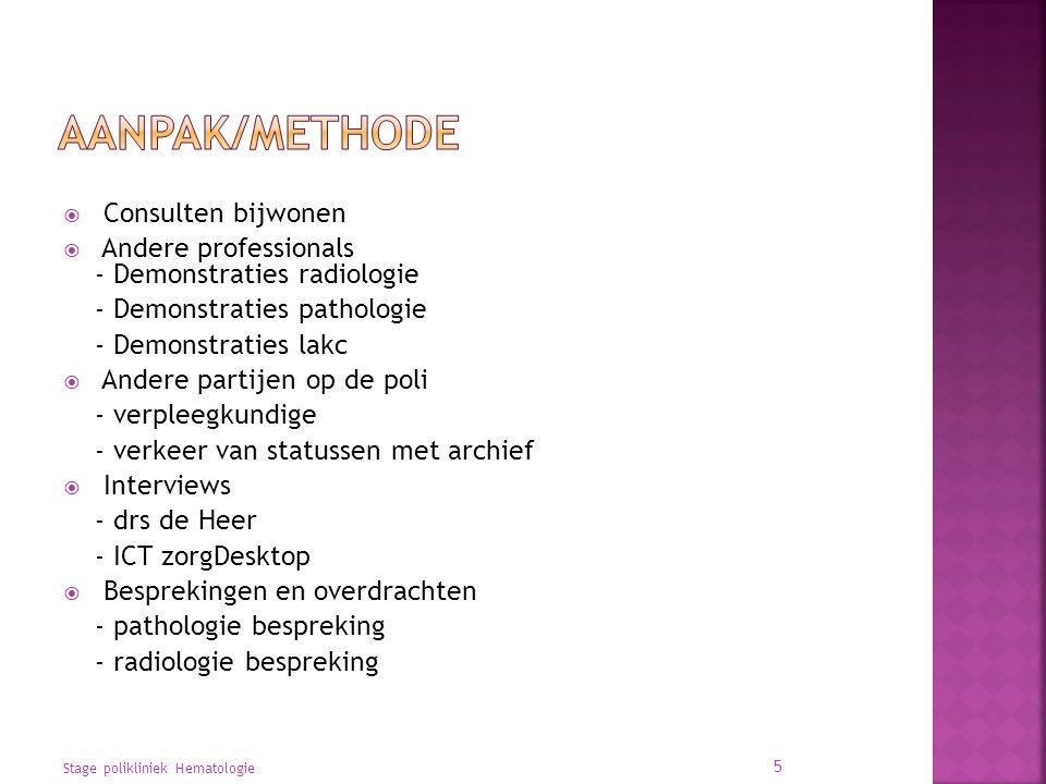 Aanpak/methode Consulten bijwonen
