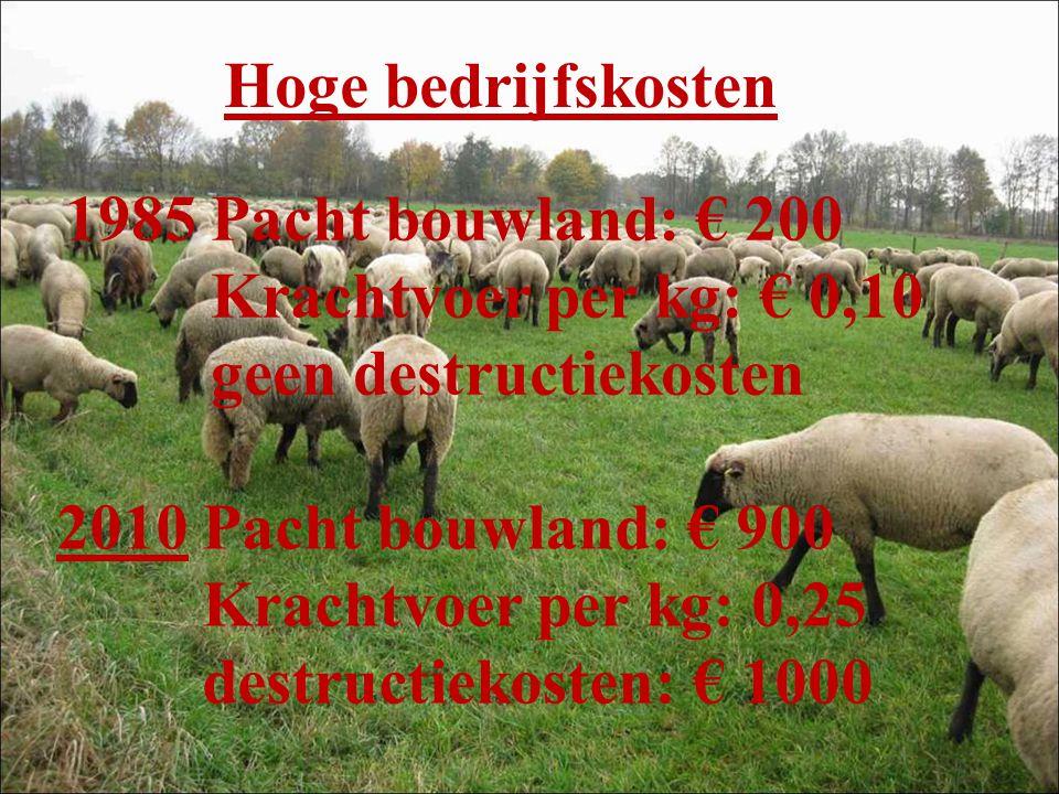 Hoge bedrijfskosten 1985 Pacht bouwland: € 200. Krachtvoer per kg: € 0,10. geen destructiekosten.