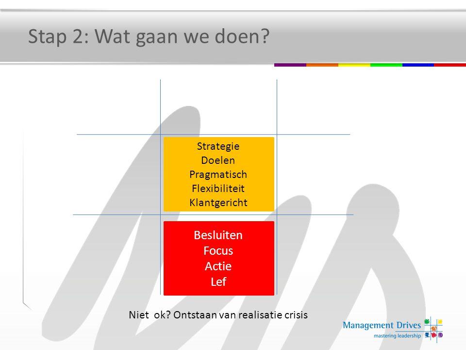 Stap 2: Wat gaan we doen Besluiten Focus Actie Lef Strategie Doelen