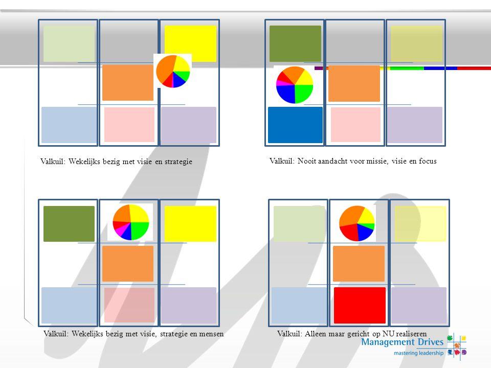 Valkuil: Wekelijks bezig met visie en strategie
