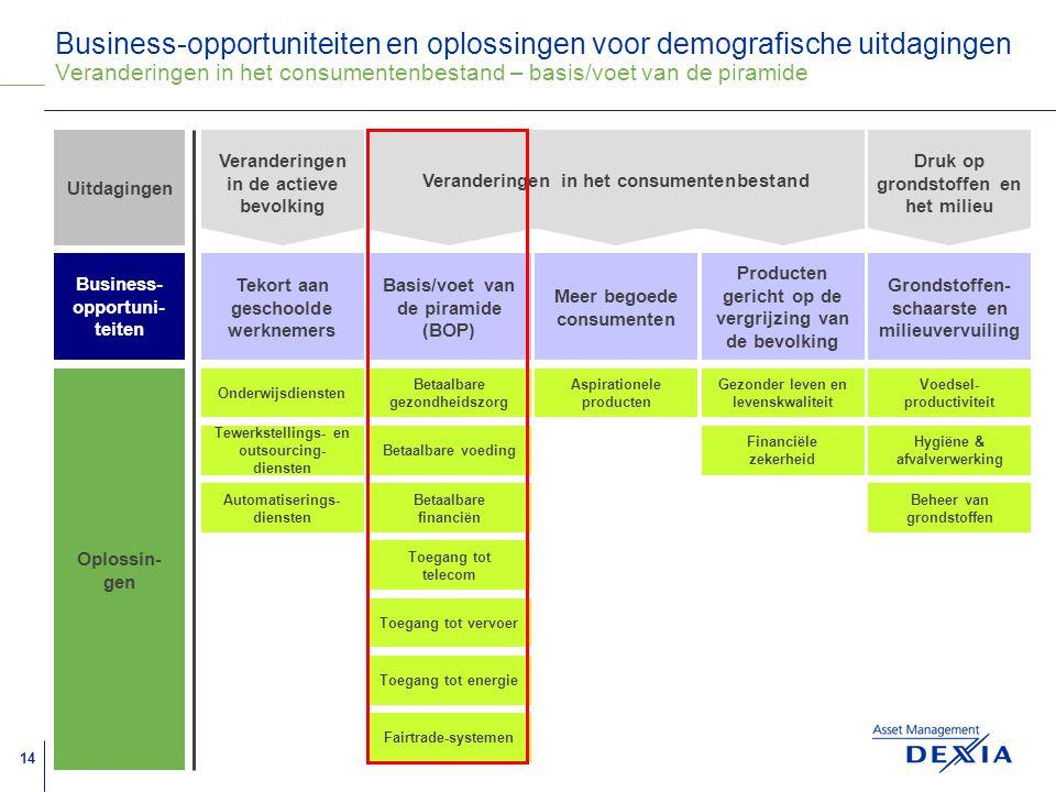 Business-opportuniteiten en oplossingen voor demografische uitdagingen Veranderingen in het consumentenbestand – basis/voet van de piramide