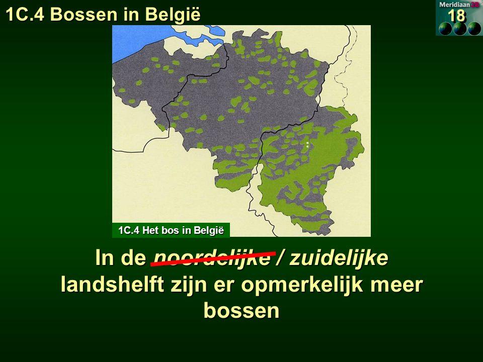 1C.4 Bossen in België 18. 1C.4 Het bos in België.