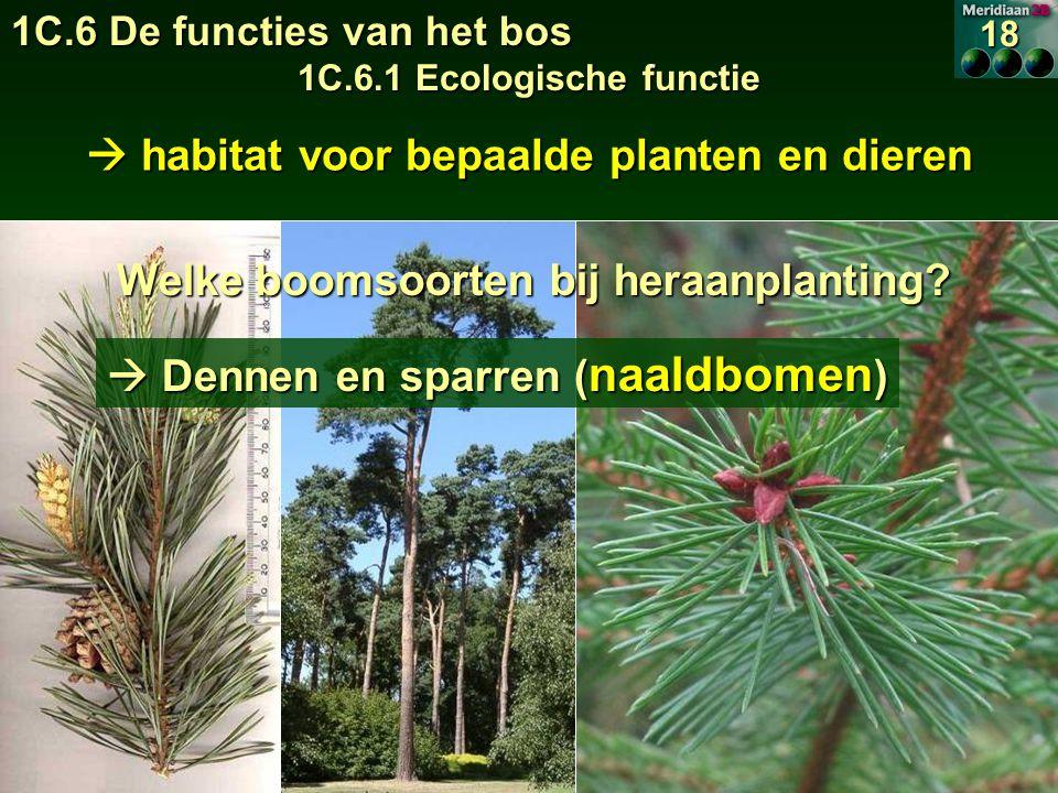  habitat voor bepaalde planten en dieren