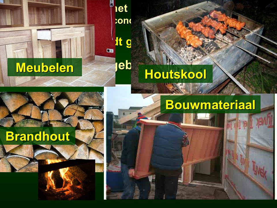  Hout wordt gekapt en verkocht Waarvoor gebruiken we hout