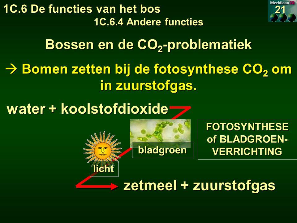 water + koolstofdioxide