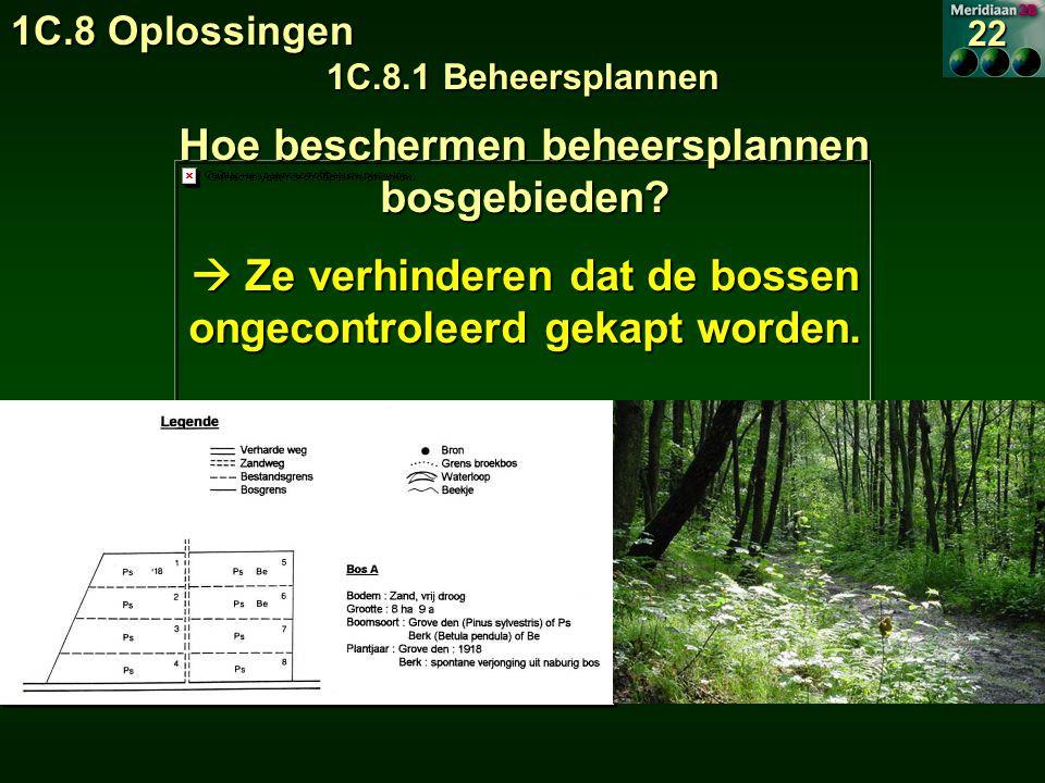 Hoe beschermen beheersplannen bosgebieden