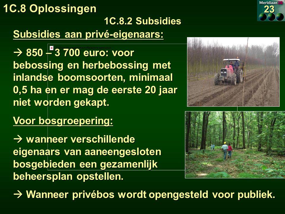 1C.8 Oplossingen Subsidies aan privé-eigenaars: