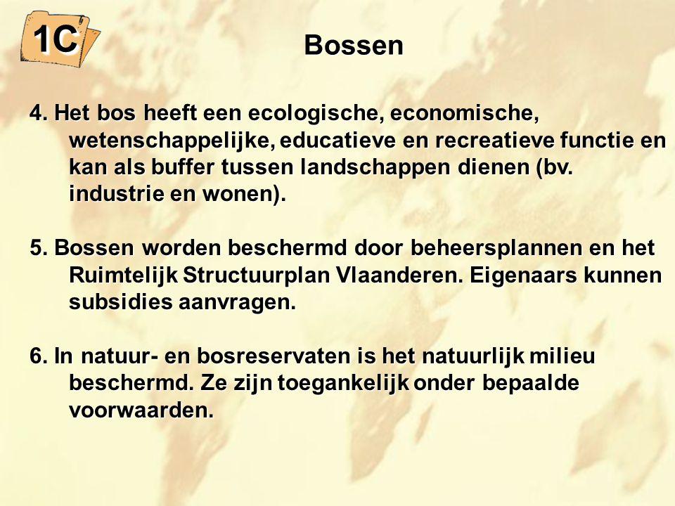 1C Bossen.