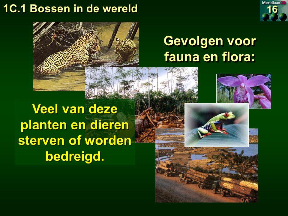 Gevolgen voor fauna en flora: