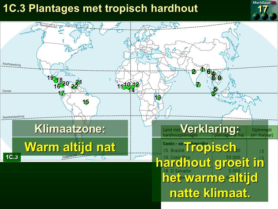 Tropisch hardhout groeit in het warme altijd natte klimaat.