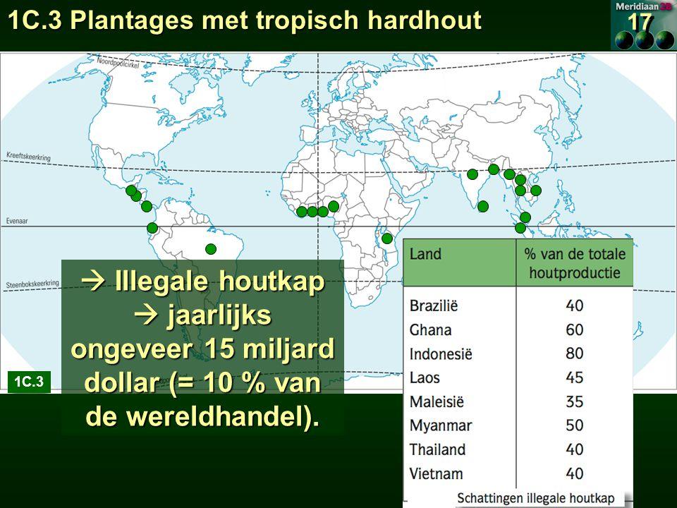 1C.3 Plantages met tropisch hardhout