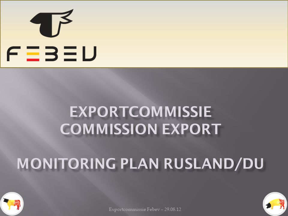 Monitoring plan Rusland/DU