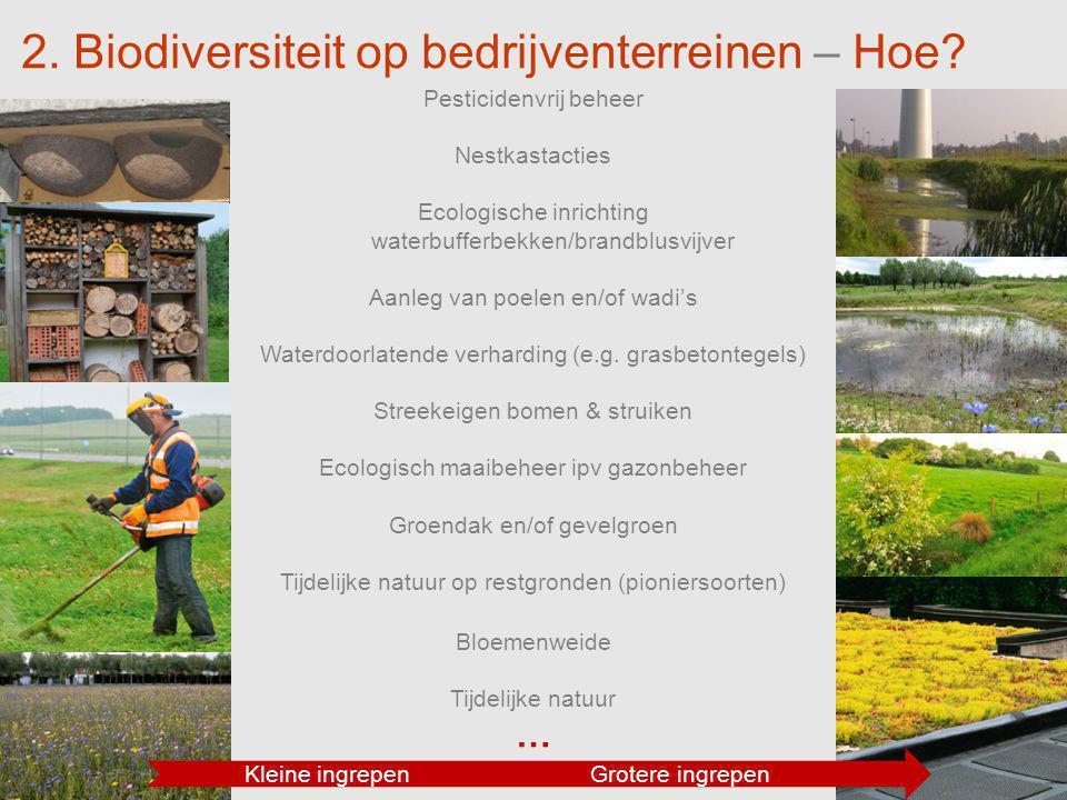 2. Biodiversiteit op bedrijventerreinen – Hoe