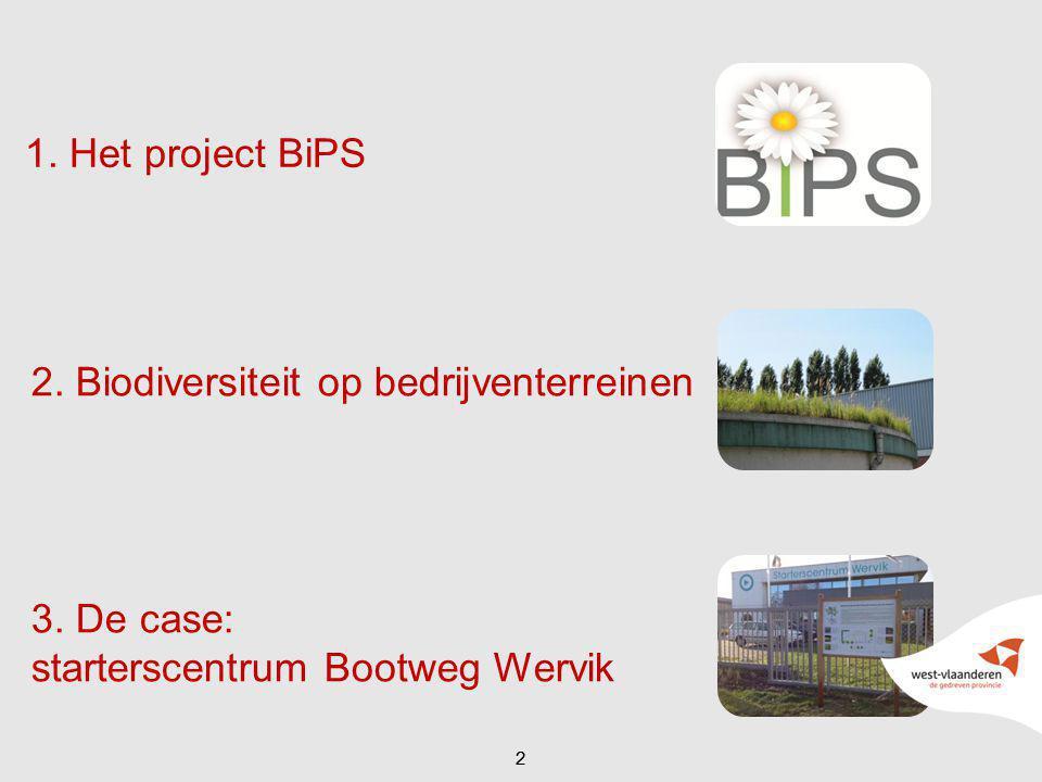 3. De case: starterscentrum Bootweg Wervik