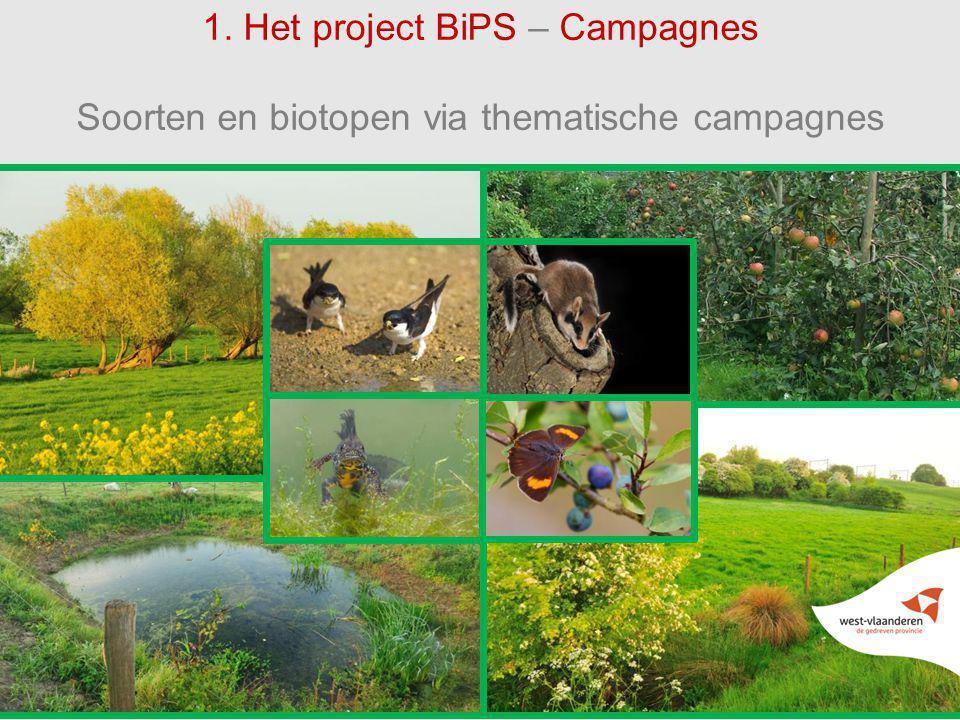 1. Het project BiPS – Campagnes Soorten en biotopen via thematische campagnes