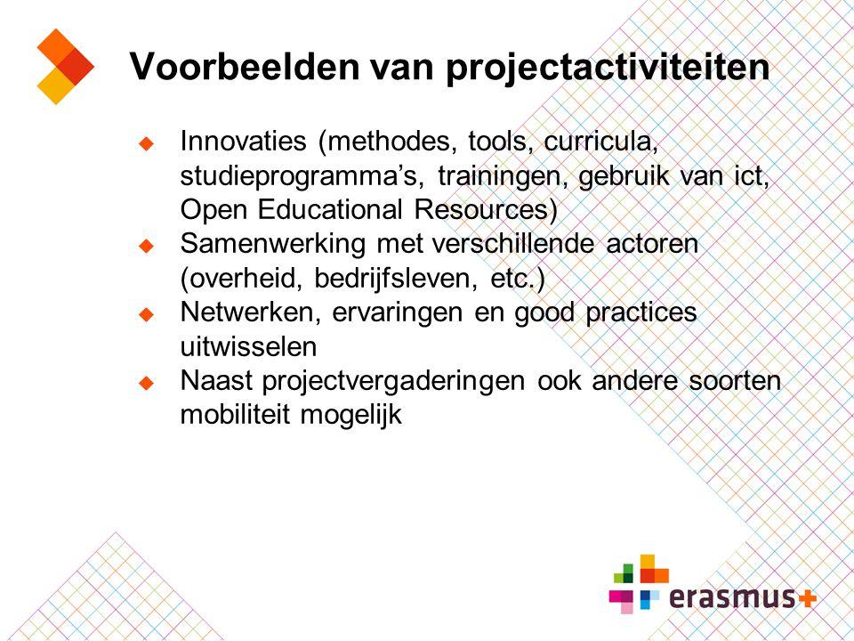 Voorbeelden van projectactiviteiten