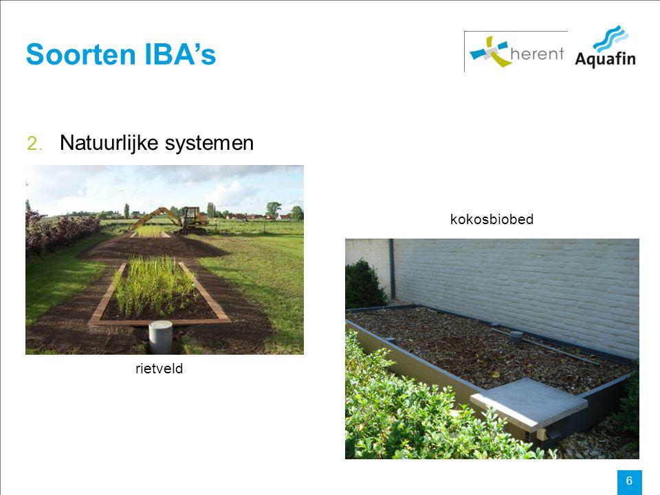 Soorten IBA's Natuurlijke systemen kokosbiobed rietveld