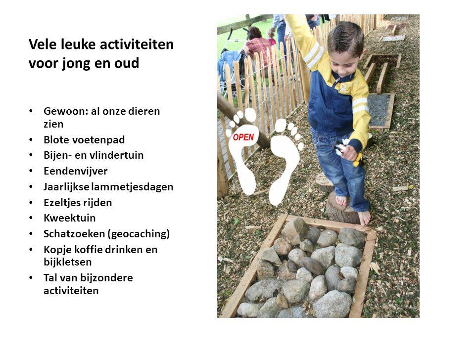 Vele leuke activiteiten voor jong en oud