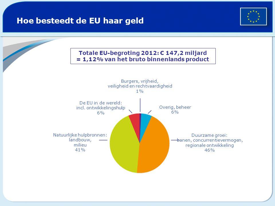 Hoe besteedt de EU haar geld