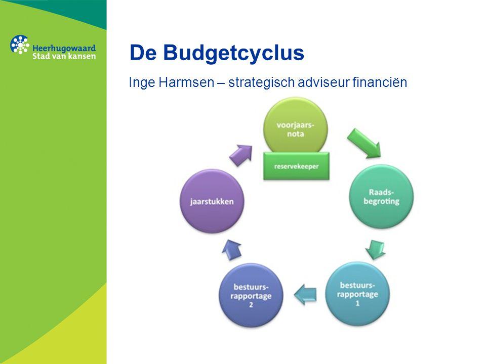 Inge Harmsen – strategisch adviseur financiën