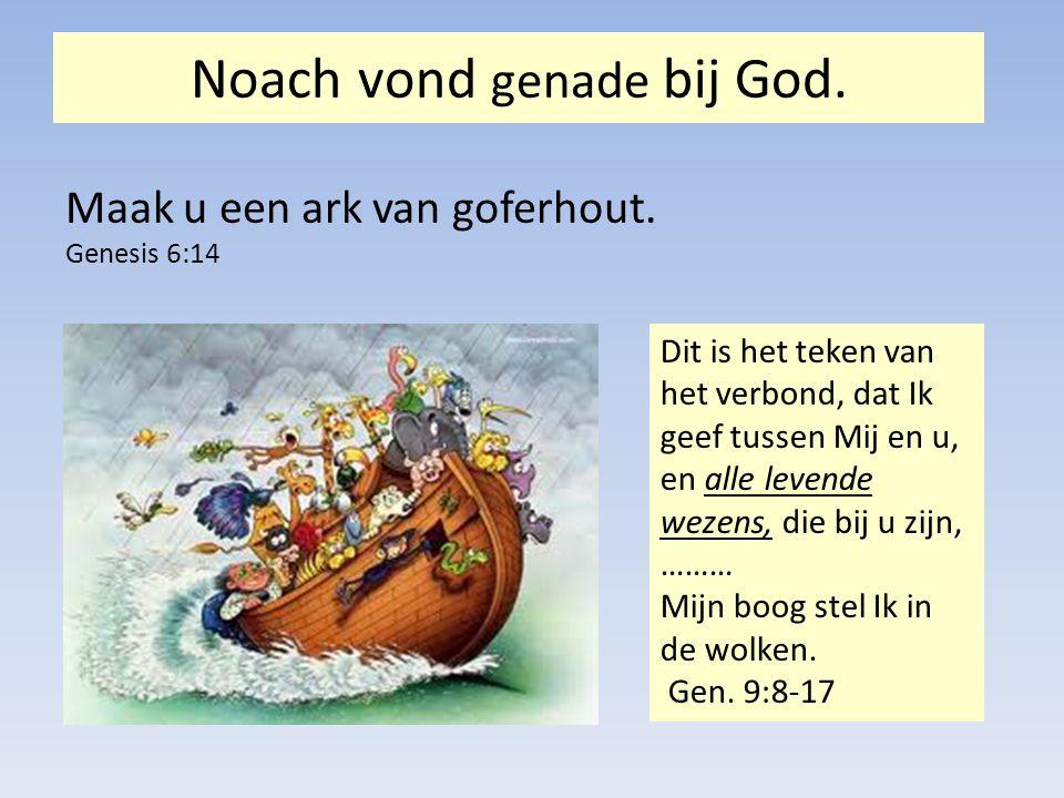 Noach vond genade bij God.