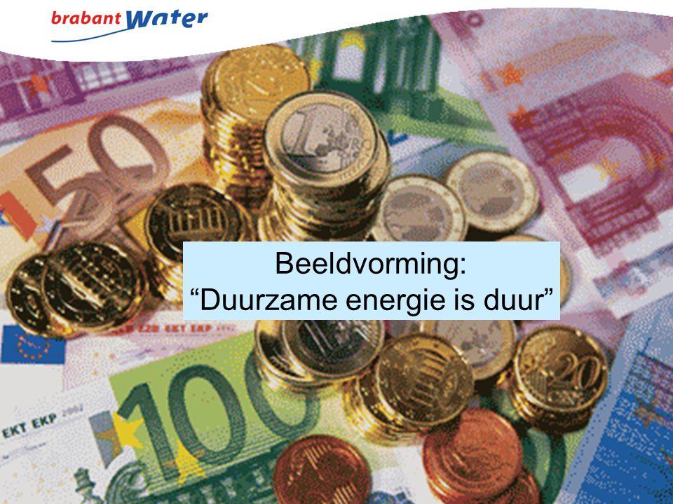 Duurzame energie is duur