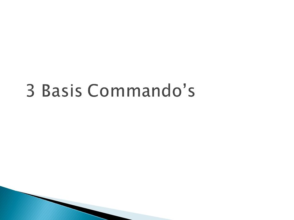 3 Basis Commando's