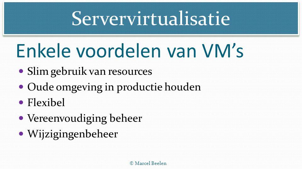 Enkele voordelen van VM's