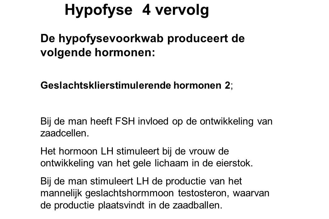 Hypofyse 4 vervolg De hypofysevoorkwab produceert de volgende hormonen: Geslachtsklierstimulerende hormonen 2;