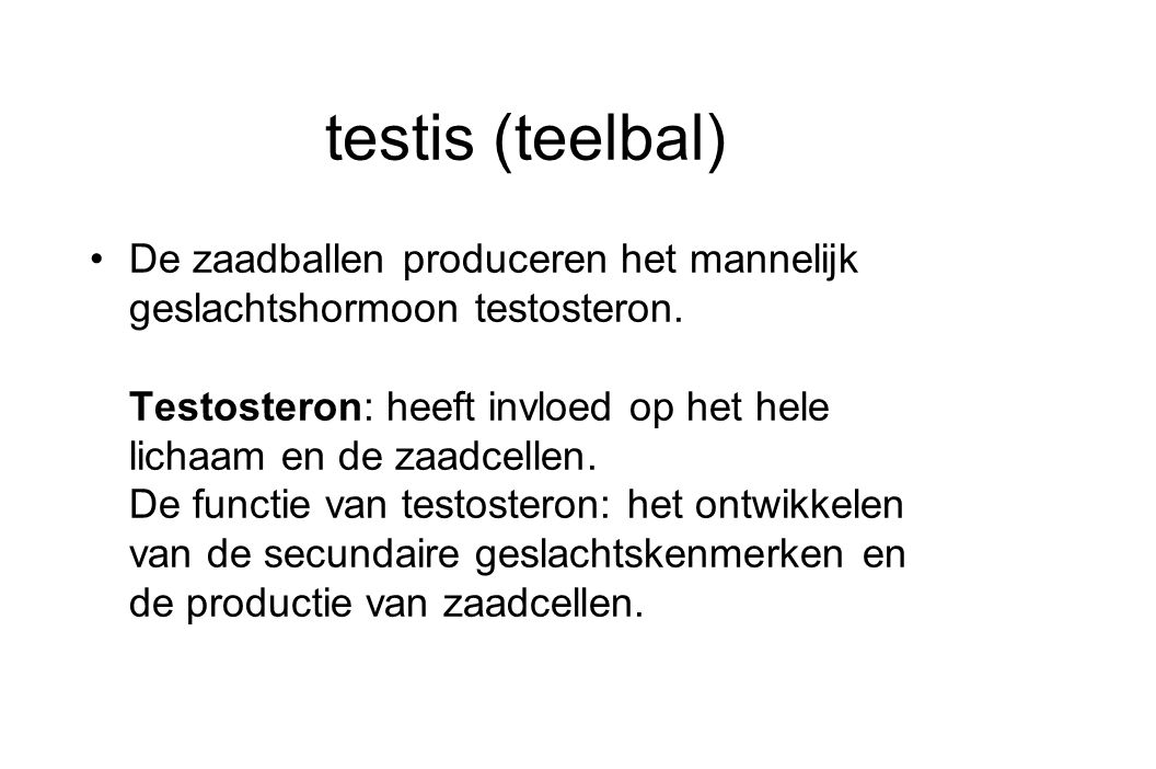 testis (teelbal)