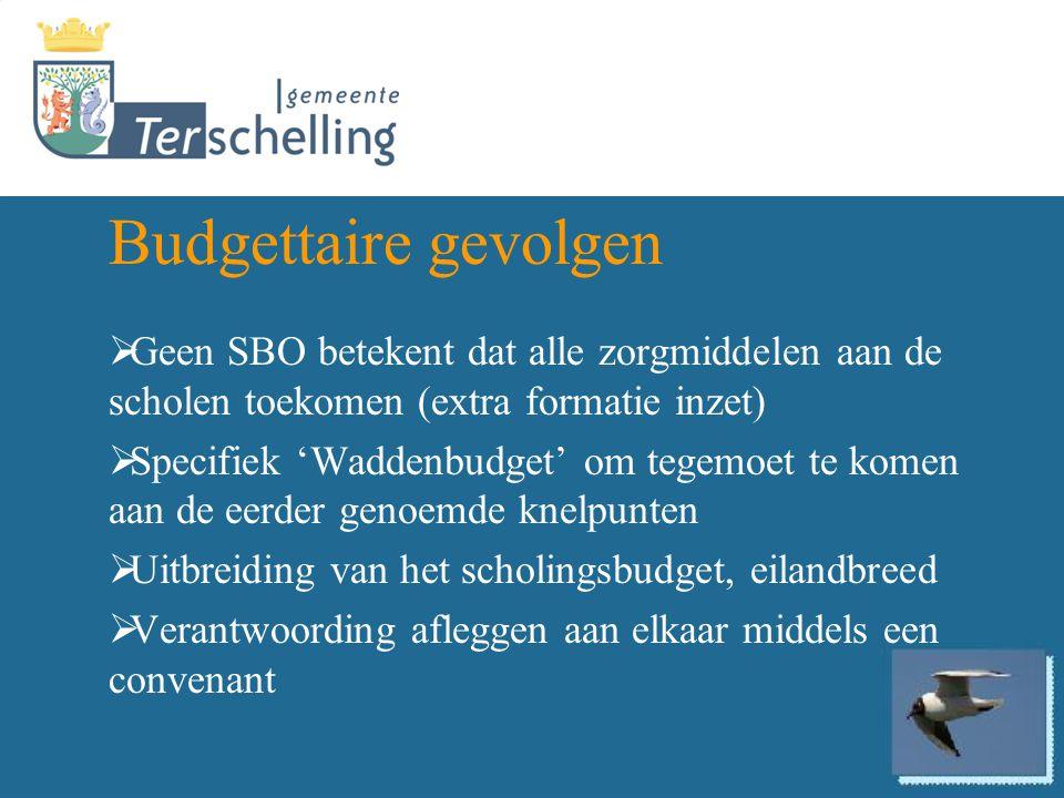 Budgettaire gevolgen Geen SBO betekent dat alle zorgmiddelen aan de scholen toekomen (extra formatie inzet)