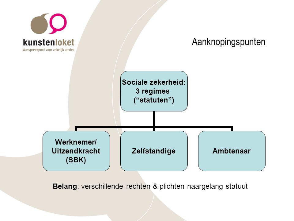Aanknopingspunten Belang: verschillende rechten & plichten naargelang statuut