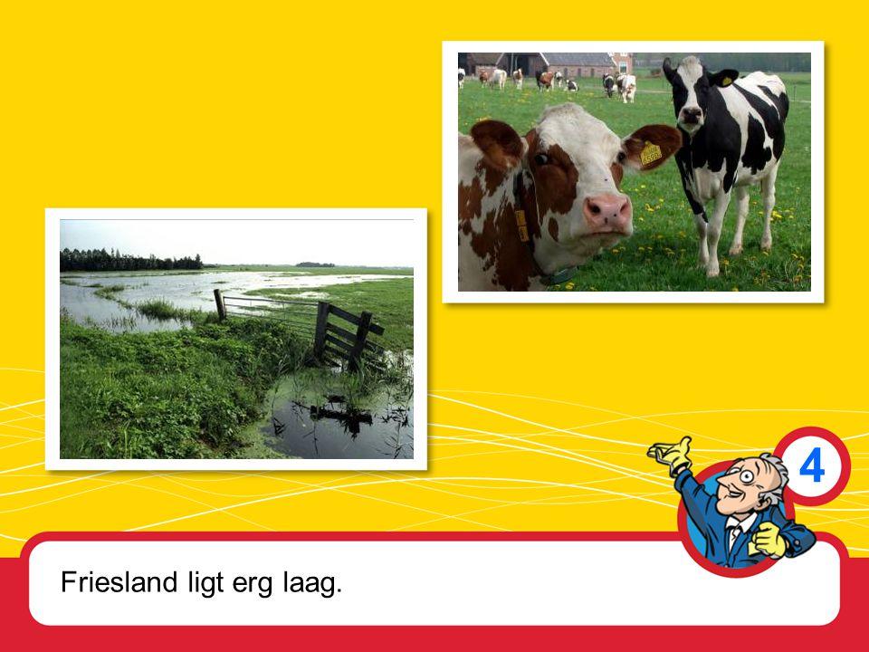 4 Friesland ligt erg laag.
