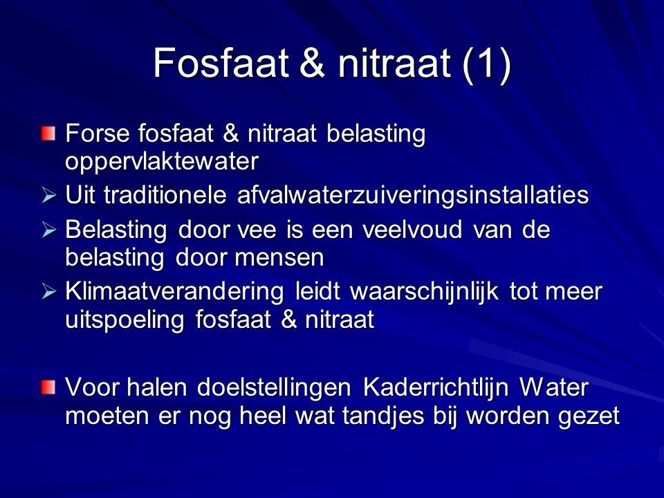 Fosfaat & nitraat (1) Forse fosfaat & nitraat belasting oppervlaktewater. Uit traditionele afvalwaterzuiveringsinstallaties.