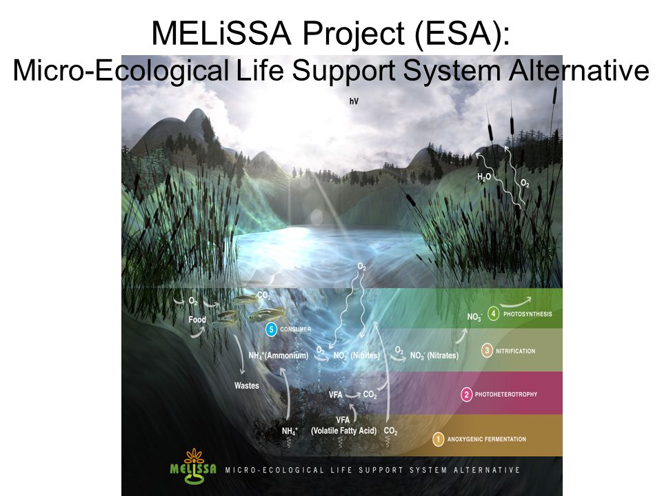 MELiSSA Project (ESA): Micro-Ecological Life Support System Alternative