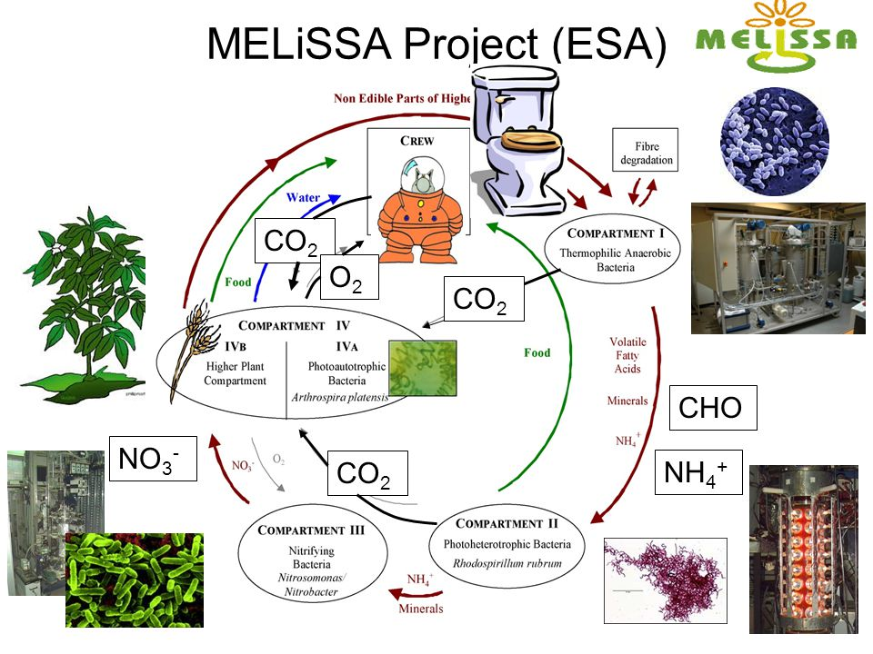 MELiSSA Project (ESA) CO2 O2 CO2 CHO NH4+ CO2 NO3-