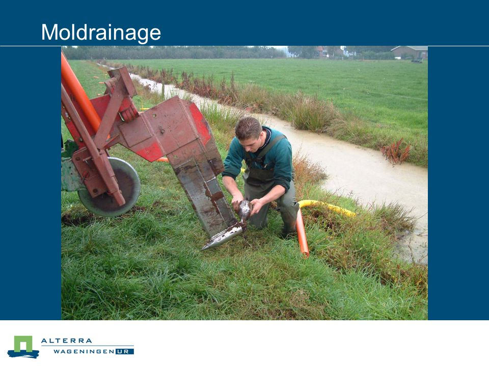 Moldrainage 04/04/2017
