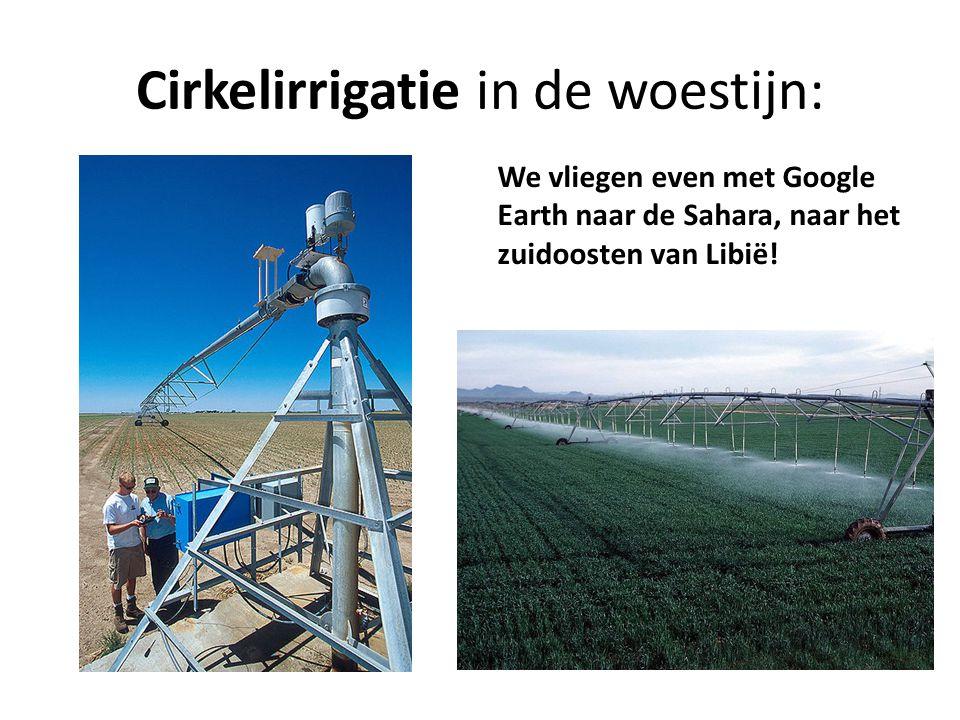 Cirkelirrigatie in de woestijn: