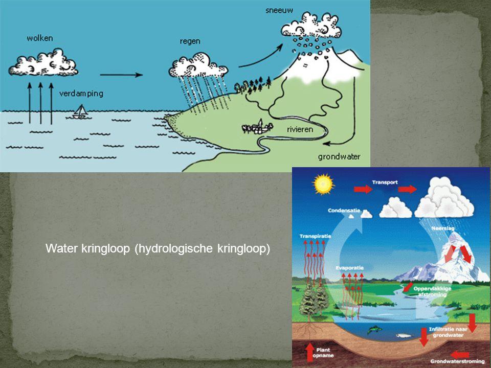 Hydrologische kringloop